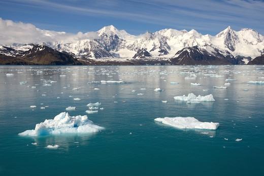 Stock Photo: 4209-178 UK, South Georgia Island, Cumberland West Bay, Ice in Jason Harbor