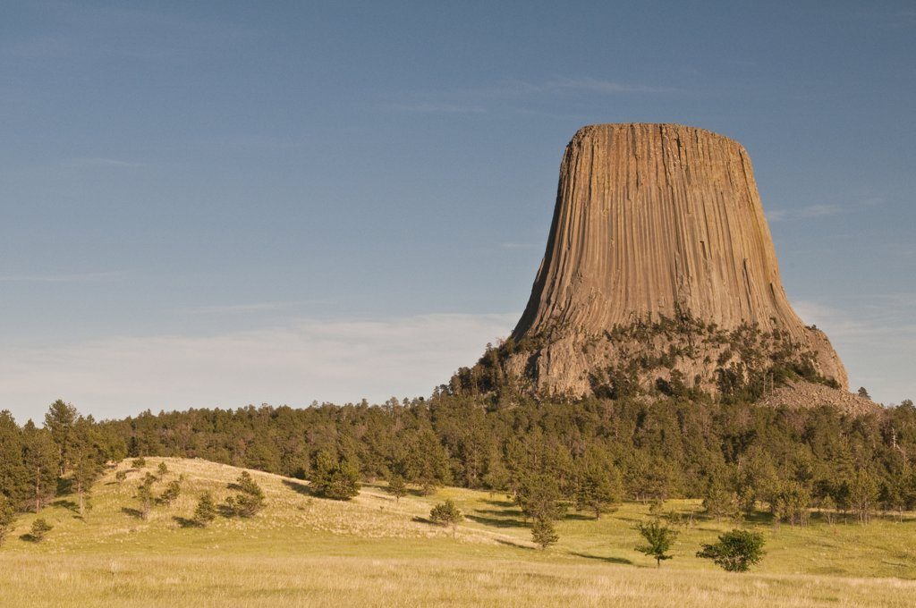 Trees with the butte in a landscape, Devils Tower National Monument, Wyoming, USA : Stock Photo