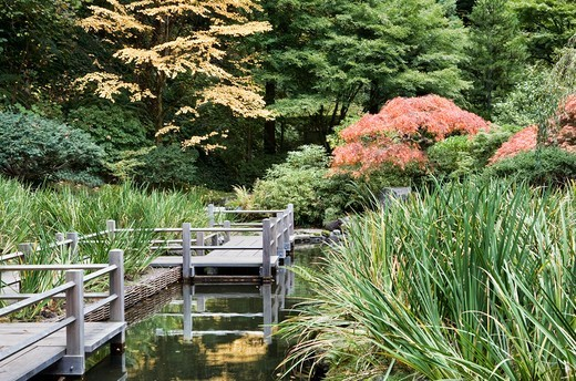 Zig Zag Bridge, Japanese Garden, Portland, Oregon, USA : Stock Photo