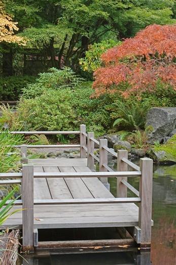 Zig Zag Bridge in Japanese Garden.  Portland, Oregon, USA : Stock Photo