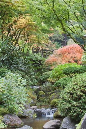 Japanese Garden, Hidden Bridge, Porltand, Oregon, USA : Stock Photo