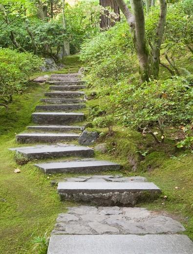 Stone Stairway in Japanese Garden.  Japanese Garden, Portland, Oregon, USA : Stock Photo