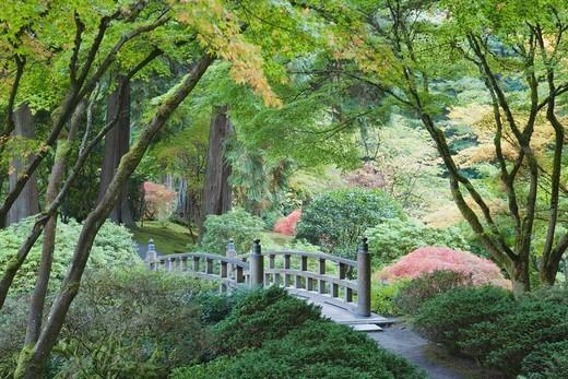 Moon Bridge in a Japanese Garden,  Portland, Oregon, USA : Stock Photo