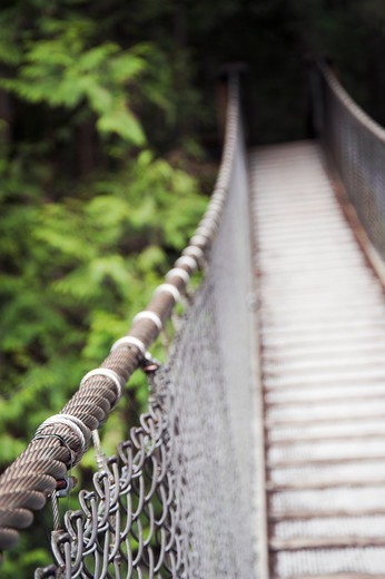 Suspension Bridge in North Vancouver, British Columbia, Canada : Stock Photo