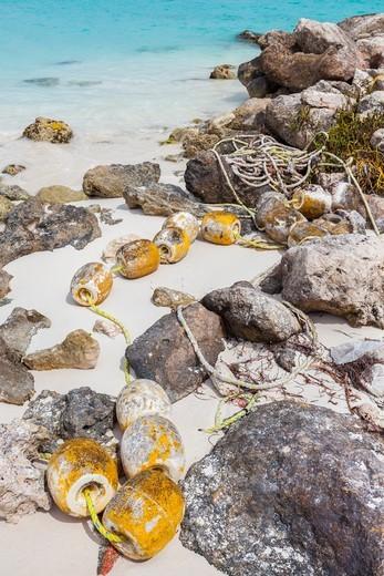 Floatsam in Cancun, Quintana Roo, Mexico : Stock Photo