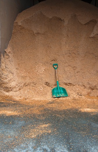 Sawdust and shovel : Stock Photo