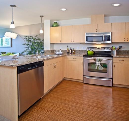 Modern Contemporary Kitchen : Stock Photo