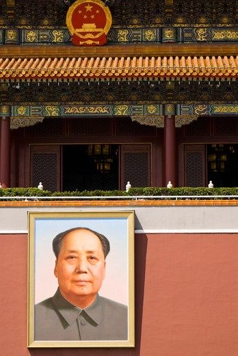 Portrait of Mao Zedong : Stock Photo