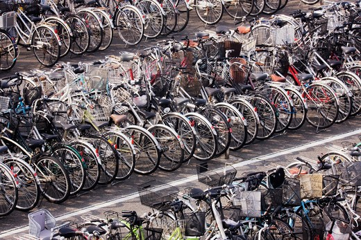 Rows of Parked Bicycles : Stock Photo