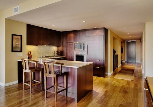Kitchen in Luxury Condo : Stock Photo