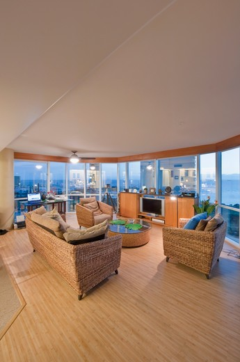 Upscale Living Room and Kichenette in High Rise Condo : Stock Photo