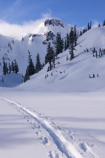 Heather Meadows Recreation Area, North Cascades Washington : Stock Photo