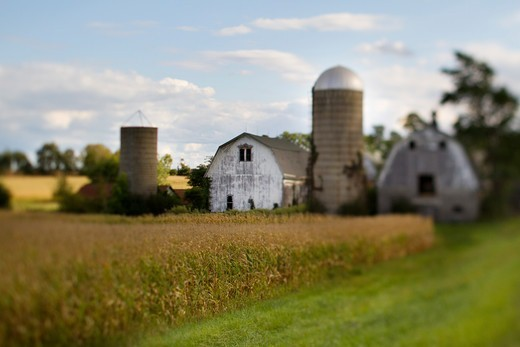 An arable farm in USA : Stock Photo