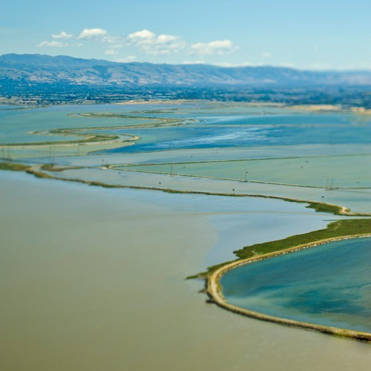 Coastal Flood Plains : Stock Photo