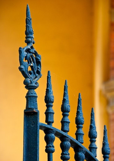 Wrought Iron Gate Detail : Stock Photo