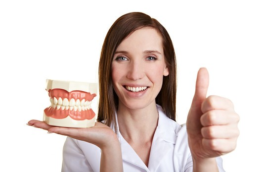 Stock Photo: 4232R-1647 Smiling female dentist with teeth model holding her thumb up