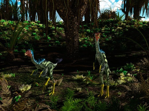 Peacock-sized theropod dinosaurs of the genus Caudipteryx wander a landscape dominated by cycad-like seed plants of the genus Williamsonia 125 million years ago in what is today China.  Caudipteryx was a maniraptoran with a combination of reptile and bird-like features, including soft downy feathers that covered its body and a broad feathered tail. It could not fly, but was probably a swift runner. : Stock Photo