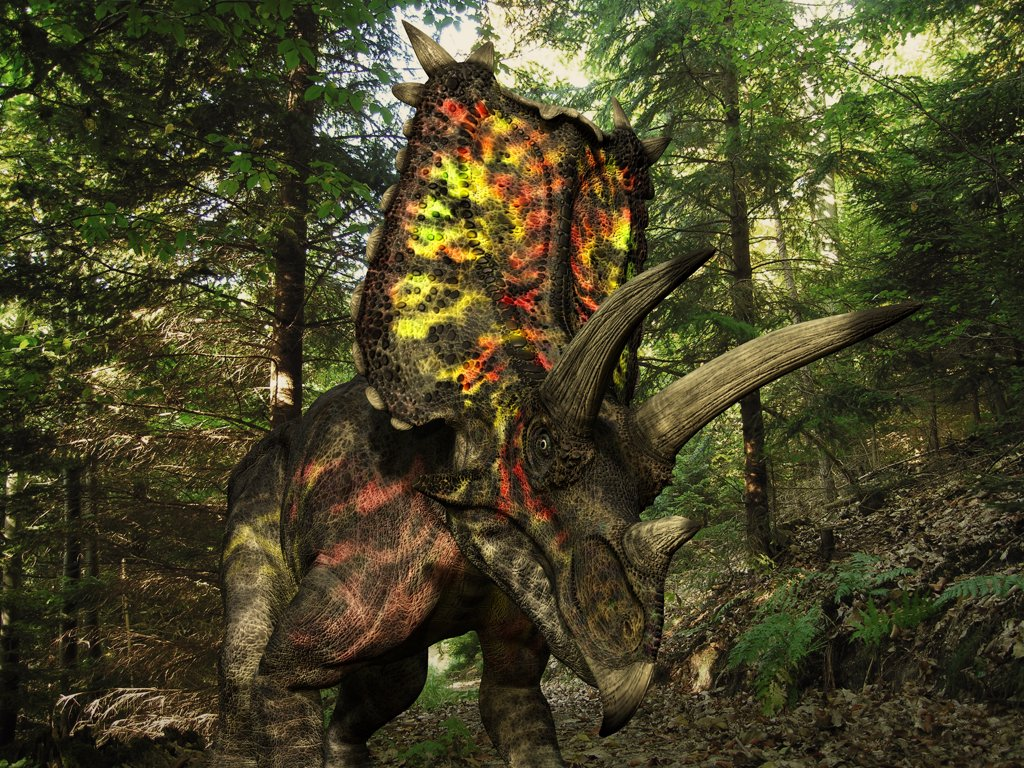 Stock Photo: 4239-779 A six ton, 27 foot long Pentaceratops wonders a Cretaceous forest 75 million years ago in what is today the southwestern United States