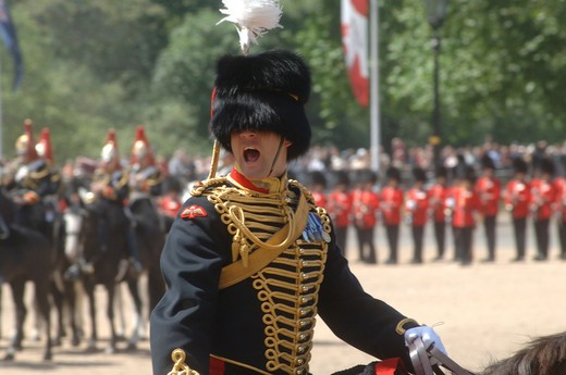 An officer shouts commands during the Trooping the Colour ceremony at Horse Guards Parade, London, England : Stock Photo