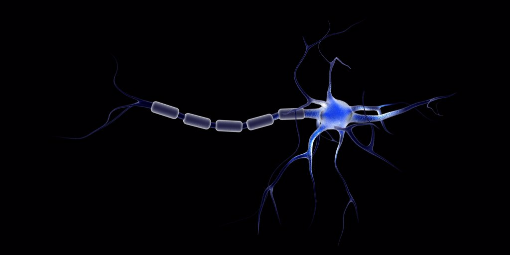 Conceptual image of a neuron. : Stock Photo