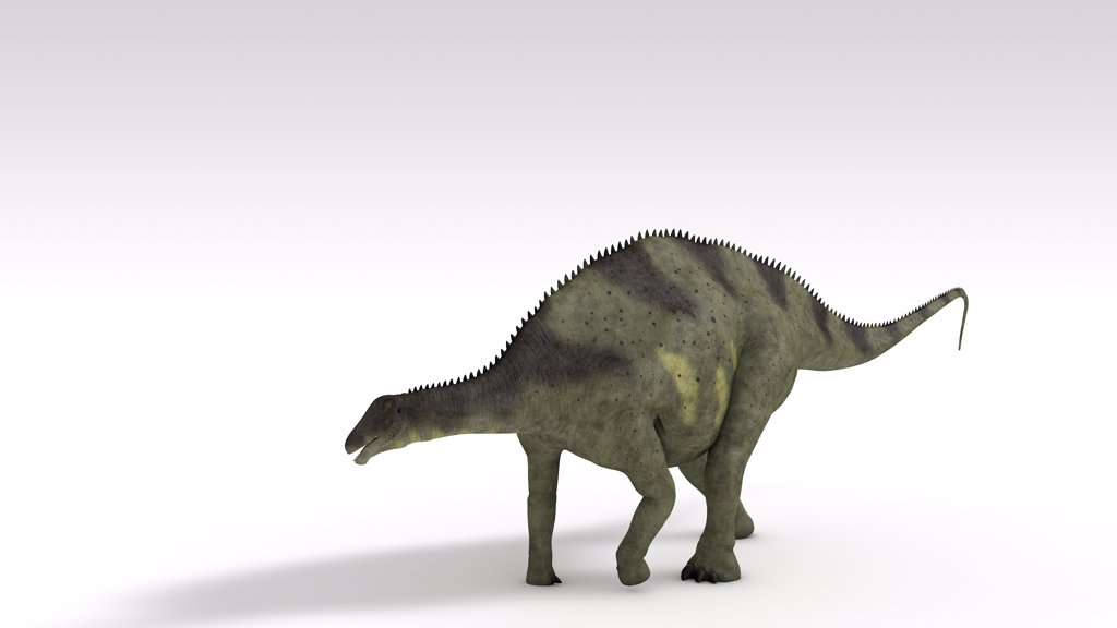 Brachytrachelopan dinosaur, white background. : Stock Photo