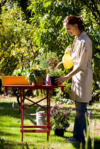 Stock Photo: 4252-14785 Woman gardening