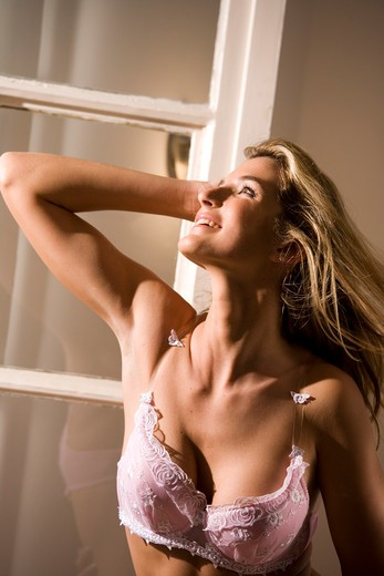 Stock Photo: 4252-15977 Woman lingerie