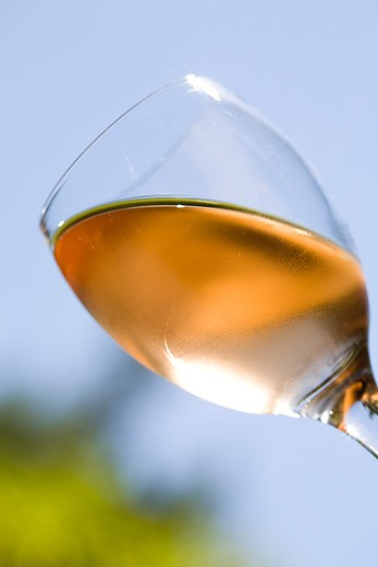 Rose wine glass : Stock Photo