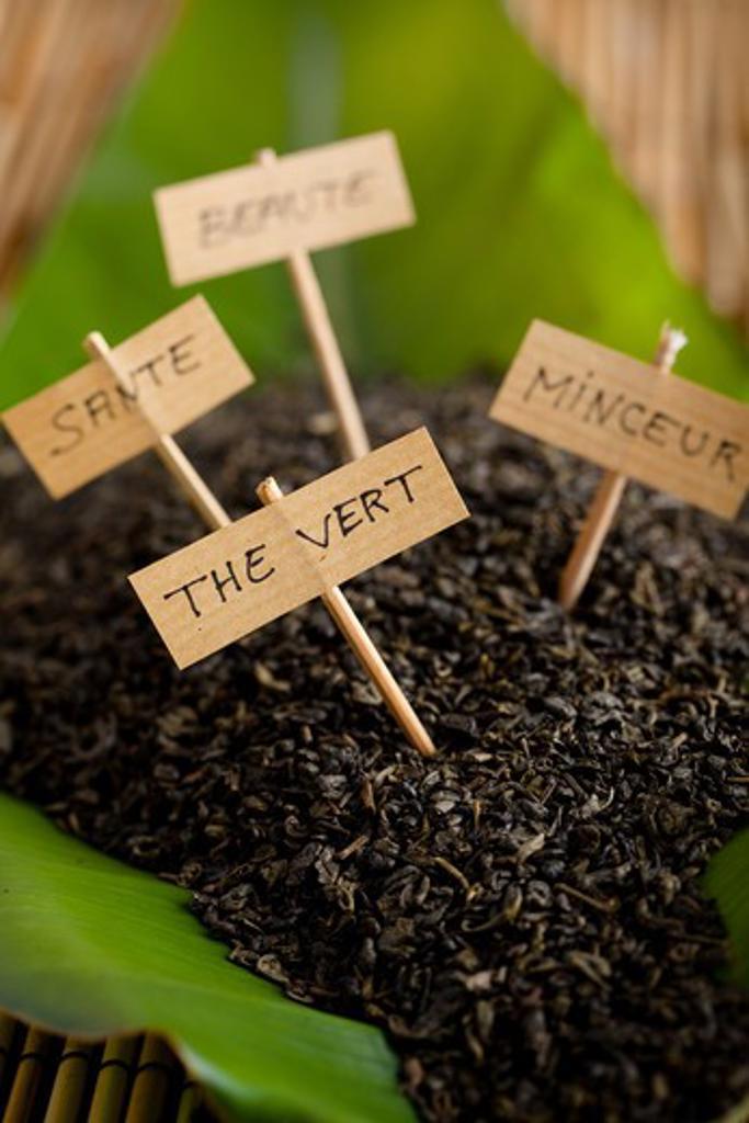 Stock Photo: 4252-19737 Green tea virtues