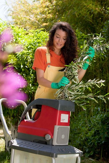 Woman wood crusher : Stock Photo