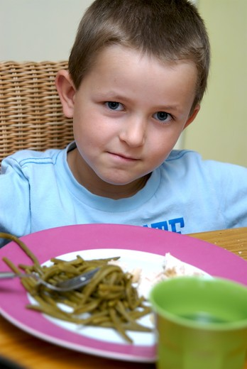 Stock Photo: 4252-30026 Boy meal