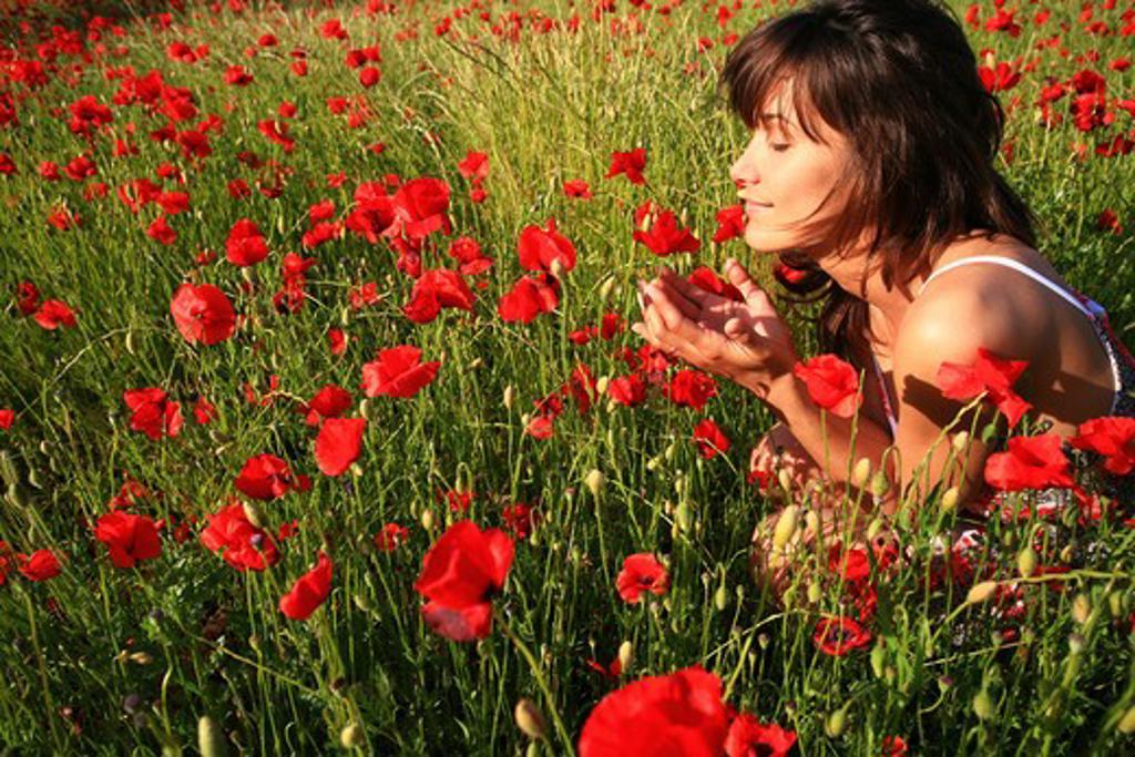 Woman poppys : Stock Photo