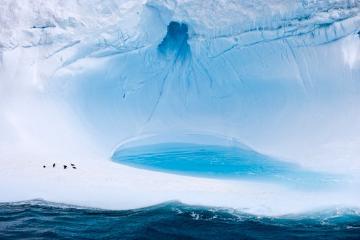 Antarctic iceberg with penguins,near King George Island, South Shetland Islands, Antarctica : Stock Photo