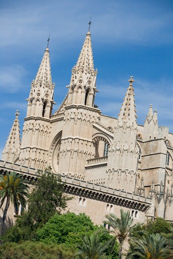 Low angle view ofLa Seu Palma Cathedral,Palma, Mallorca, Balearic Islands, Spain, Europe : Stock Photo