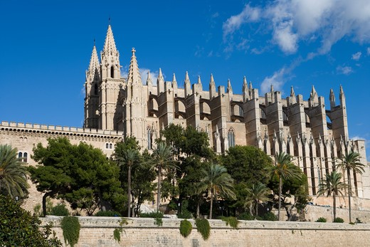 Stock Photo: 4256-1197 Low angle view ofLa Seu Palma Cathedral, Palma, Mallorca, Balearic Islands, Spain, Europe