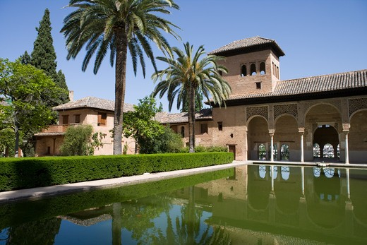 Stock Photo: 4256-1202 Pool and palm trees atPalacio del Partelat Alhambra,Granada, Andalucia, Spain, Europe