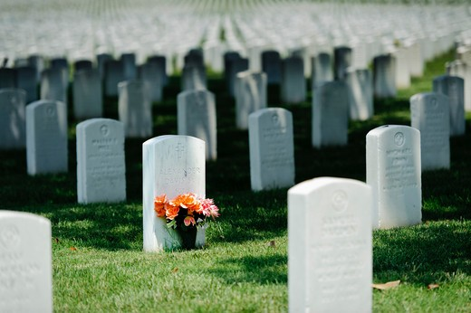 USA, Virginia, Veteran's Cemetery, Graves of fallen USA service men : Stock Photo