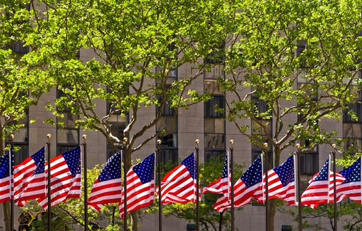 USA, New York, New York City, Row of American flags outside office building in Manhattan : Stock Photo