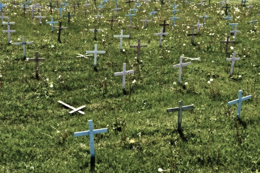 Crosses in a graveyard, Pennsylvania, USA : Stock Photo