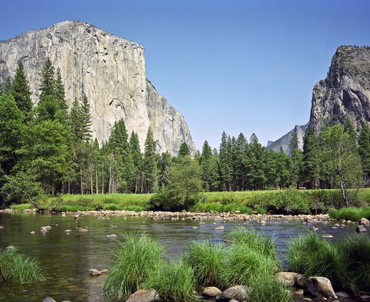 Stock Photo: 4260-1250 El Capitan and the Merced River in Yosemite Valley, Yosemite National Park, California, USA