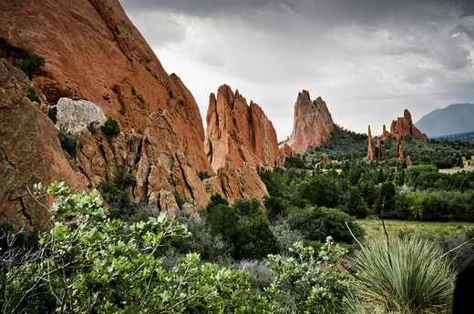 Red rocks and green foliage in Garden of the Gods, Colorado Springs, Colorado, USA : Stock Photo