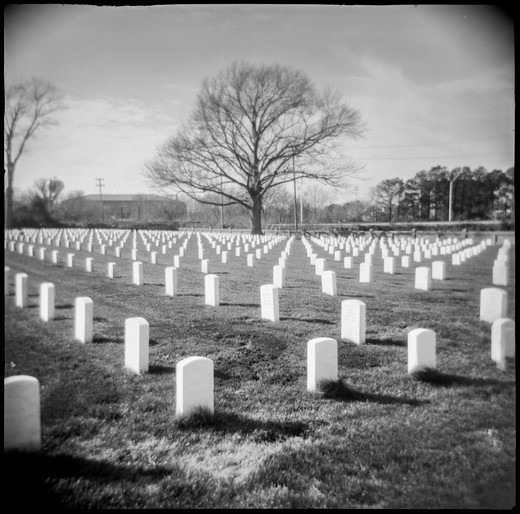 Stock Photo: 4260-1484 Tombstones in a cemetery, Virginia, USA