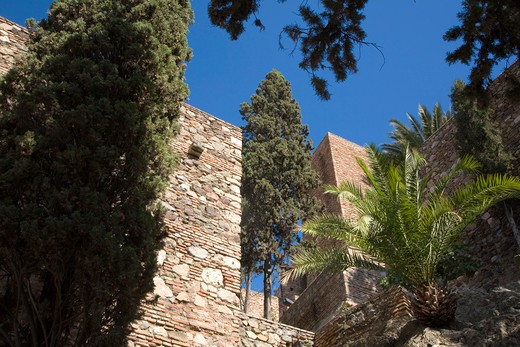 Alcazaba, Malaga, Andalusia, Spain, Europe : Stock Photo