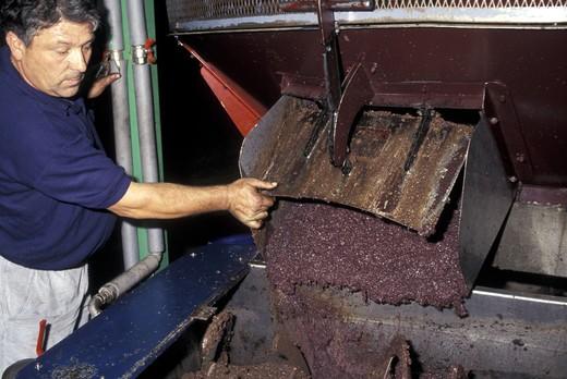 Oil preparation, Fasano, Puglia, Italy : Stock Photo