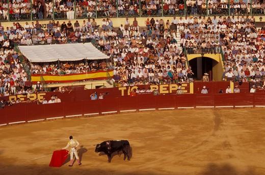 Bullfighting, Jerez de la Frontera, Andalusia, Kingdom of Spain, Europe : Stock Photo