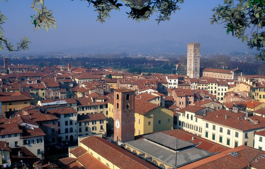 Cityscape, Lucca, Tuscany, Italy : Stock Photo