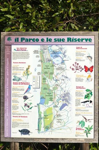 Lipu natural place, Massaciuccoli, Tuscany, Italy : Stock Photo