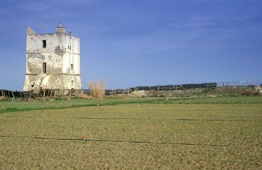 torre pietra, margherita di savoia, Italy : Stock Photo