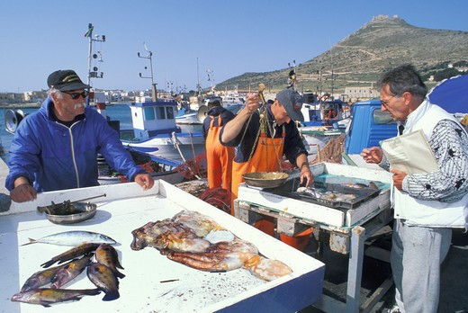 Stock Photo: 4261-25076 fishermen, favignana island, Italy