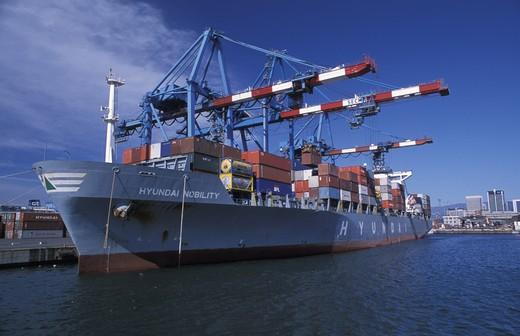 Cranes, Industrial harbour, Genoa, Ligury, Italy : Stock Photo